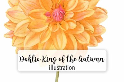 Vintage Watercolor Dahlia King of the Autumn