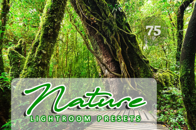 75 Nature Lightroom Presets