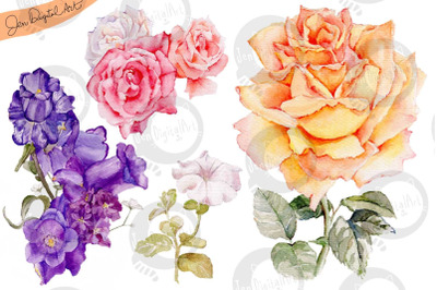 Hand Painted WATERCOLOR FLOWERS   Clip art   PNG/JPEG