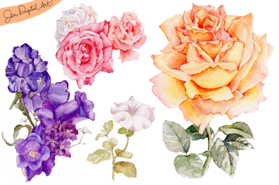 Hand Painted WATERCOLOR FLOWERS | Clip art | PNG/JPEG