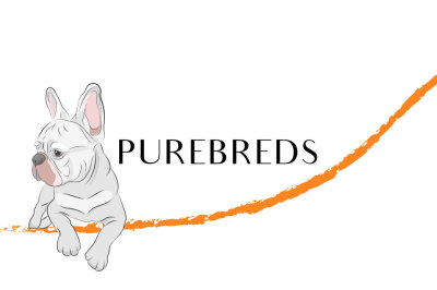 Purebred dogs vector set for your design.