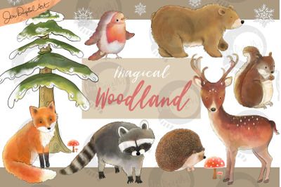 Magical Woodland | 11 illustrations | Animals and Elements