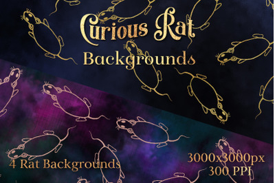 Curious Rat Backgrounds - 4 Image Set
