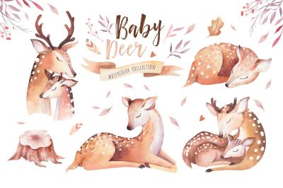 Cute baby deer collection
