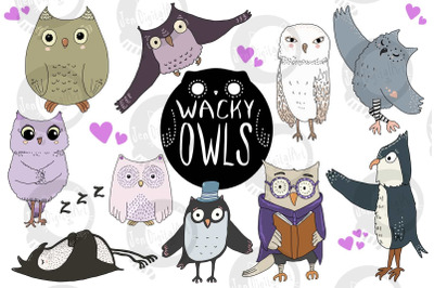 Wacky Owls | 10 images | Clip art illustrations | PNG/JPEG