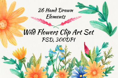 Watercolor Wild Flowers Clip Art