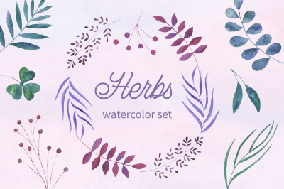 Herbs. Watercolor collection.