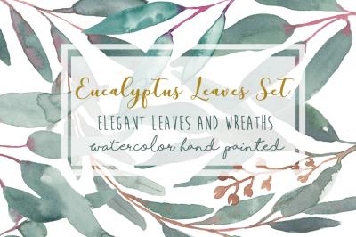 Elegant Watercolor Eucalyptus Leaves