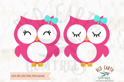 Owl with lashes circle monogram frame SVG, PNG, EPS, DXF, PDF formats