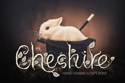 Cheshire. Hand drawn font