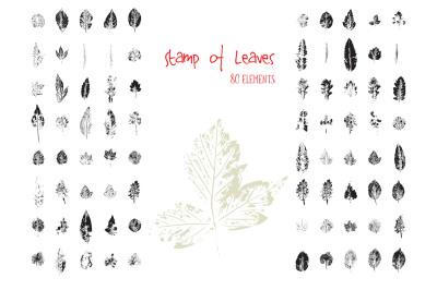 Stamp Leaves