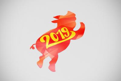 2019 New Year Symbols Set