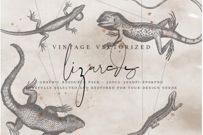 VintageVectorized - Lizards Clipart