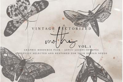 VintageVectorized - Moths Clipart