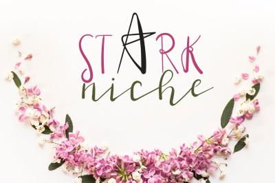 Stark Niche Script Font by watercolor floral designs