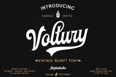 Voltury (4 fonts with extras )