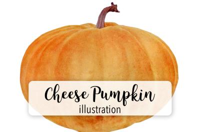 Halloween Pumpkins: Vintage Cheese Pumpkin