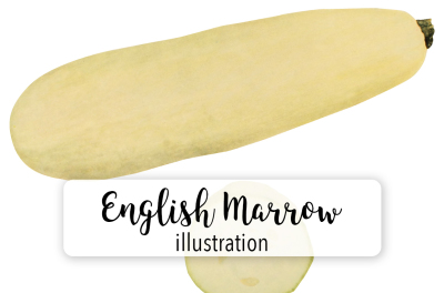 Autumn Pumpkins: Vintage English Vegetable Marrow