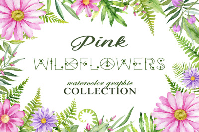 Pink wildflowers. Watercolor graphic collection.