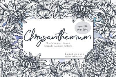 Chrysanthemum vector set