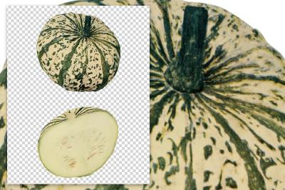 Autumn Pumpkins: Vintage Mandan Squash