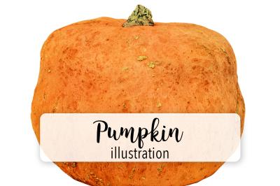 Halloween Pumpkins: Vintage Pumpkin Two