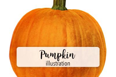 Halloween Pumpkins: Vintage Pumpkin Three