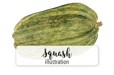 Pumpkins: Vintage Squash