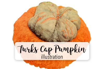 Halloween Pumpkins: Vintage Turks Cap Pumpkin
