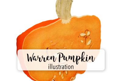 Halloween Pumpkins: Vintage Warren Sliced Pumpkin