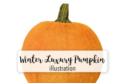 Halloween Pumpkins: Vintage Winter Luxury Pumpkin