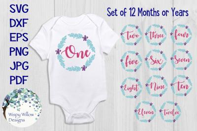Baby Monthly Milestone Bundle