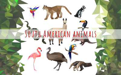 Vector set of South American animals icons low poly