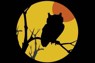 Fall Owl Shadowbox