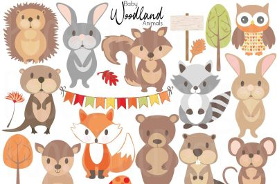 Baby Woodland Animals Clipart