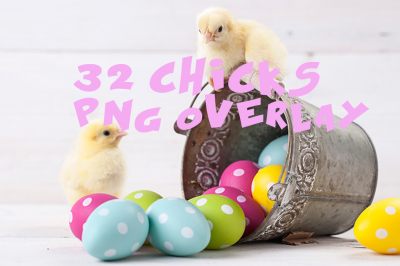 32 chicks Photo Overlays in PNG, Photography