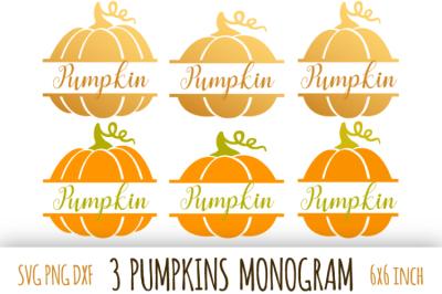 Pumpkin monogram. Thanksgiving digital clipart