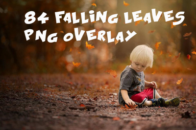 84 falling leaves Photo Overlays in PNG, Photography