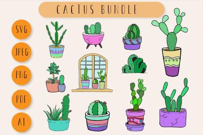Cactus Bundle