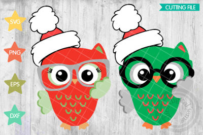 CHRISTMAS OWLS, svg, png, dxf, eps