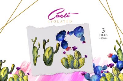 Green and blue cactuses PNG watercolor set