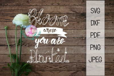 Bloom where you are planted SVG DXF PNG PDF and JPEG cutting file