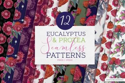 Protea & Eucalyptus Pattern Set