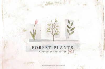 Watercolor Forest Plants