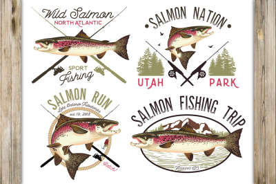 Salmon Fish Illustration