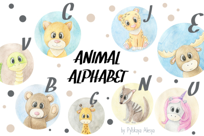 Animal ABC - Animal Alphabet