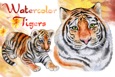 Tigers. Watercolor illustrations