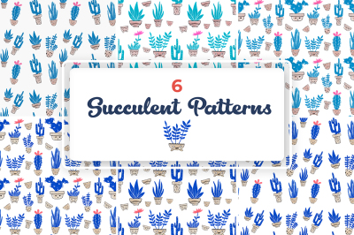 Enjoyable Succulent Patterns