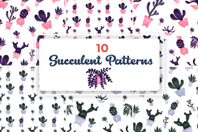 10 Succulent Patterns