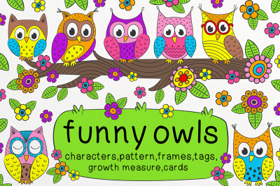 funny owls collection